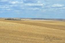 next stop Red Deer Alberta!