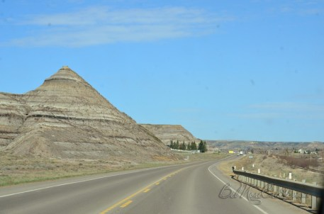 going to Royal Tyrrell Museum of Palaeontology
