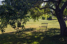 Chair underneath an apple tree at the Shelburne Museum in Vermont
