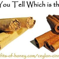 Cinnamon and Honey (FYI) more than you want to know...