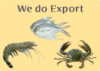 We do Export