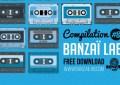 banzai-lab-8