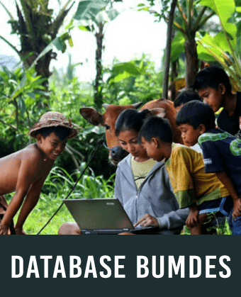 Database bumdes