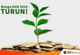 Bunga KUR 2018 Turun Jadi 7 Persen Pertahun