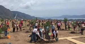 Jokowi Mengatakan Tanam 1 Juta Pohon Harus Tumbuh 1 Juta Juga