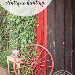 Southern-Highland-antique-hunting