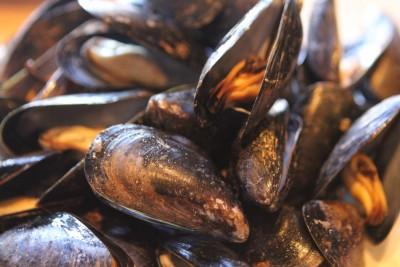 Bertha's Mussels