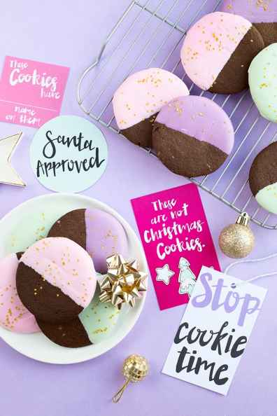 color-dipped-gingerbread-cookies-3