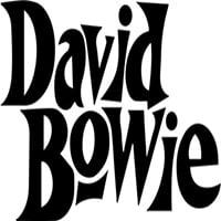 photo-picture-image-david-bowie-celebrity-look-alike-lookalike-impersonator-tribute-artist