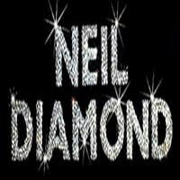 photo-picture-image-neil-diamond-tribute-artist