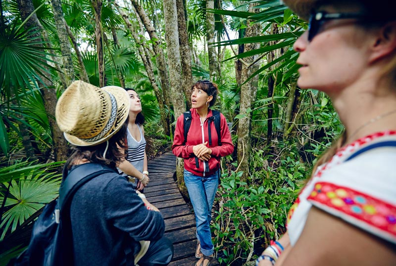 Tour réserve de Sian Kaan Mexique