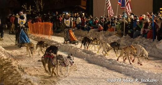 Web Sled Dog Race Jan31
