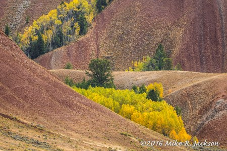 Fall Morning on the Upper Gros Ventre.
