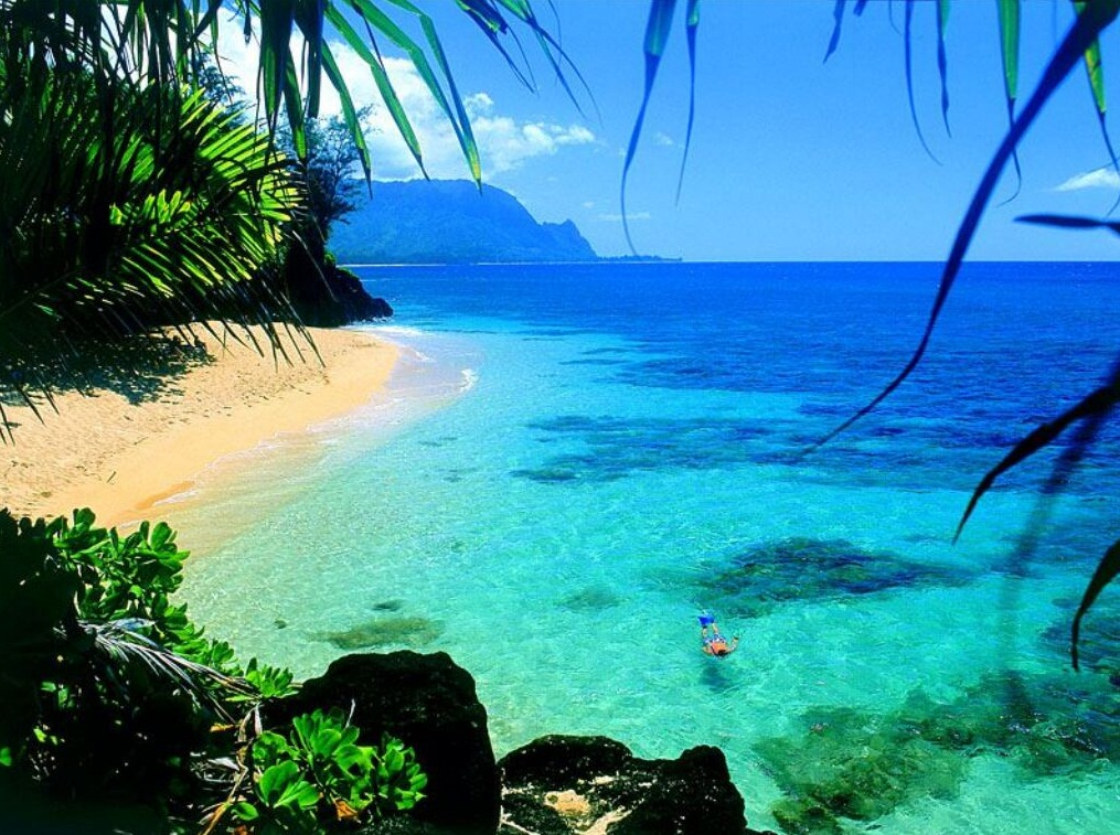 The Hawaii Island   The Most Attractive Islands to Visit in 2012 The Hawaii Island   Exotic Island