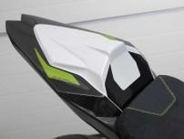 BMW eRR: uma S 1000 RR elétrica?