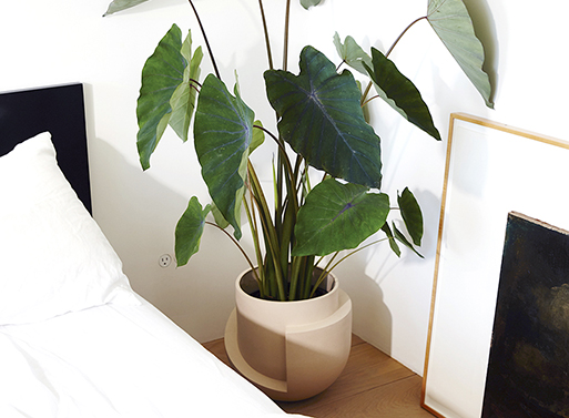 Large Vayu Floor Planter Accessories Better Living