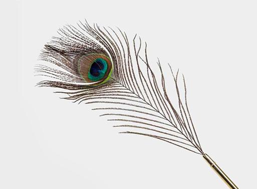Peacock Pen