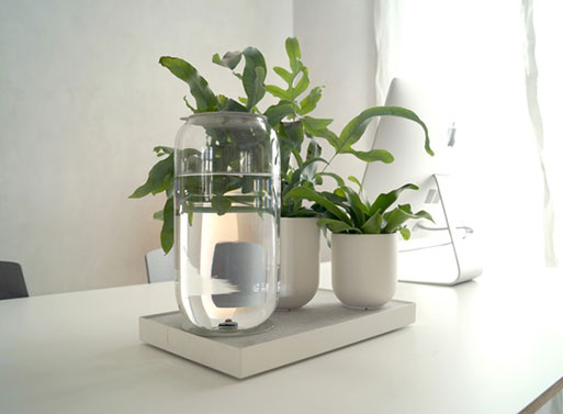 Tableau, the Automatic House Plant Watering Tray by Pikaplant