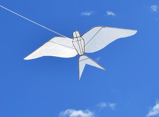 Swallow Kite Haptic Lab