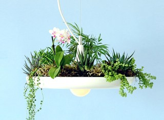babylon-light-hanging_lamp_planter_14