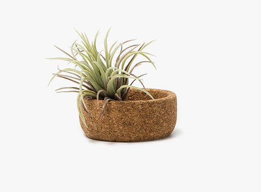 Small Cork Planter Melanie Abrantes Designs