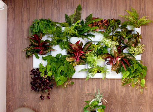 Urbio Vertical Garden Project