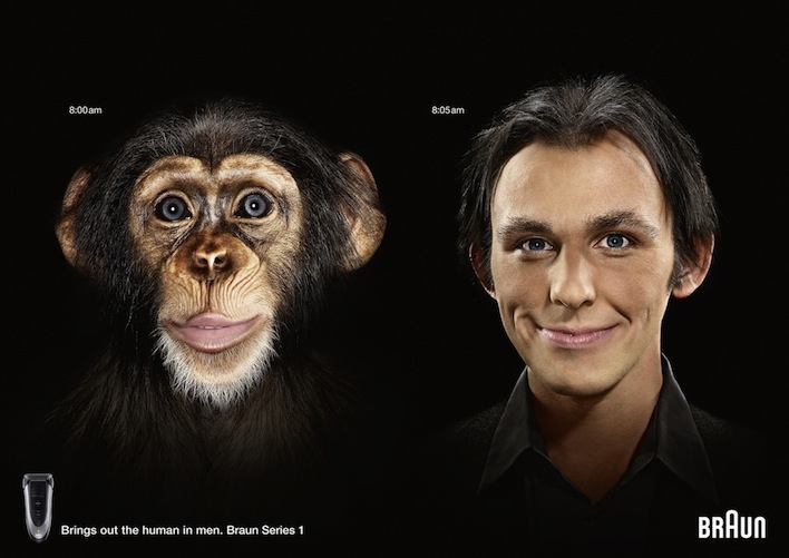 15_01244_001_Braun_Chimp_Series_1