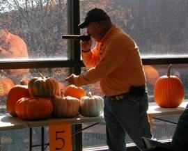 2013 pumpkin auction (web)