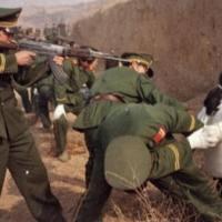agenda 21 exposed CHINA'S LATEST GHOST TOWN: A $50 BILLION FAKE REPLICA OF MANHATTAN
