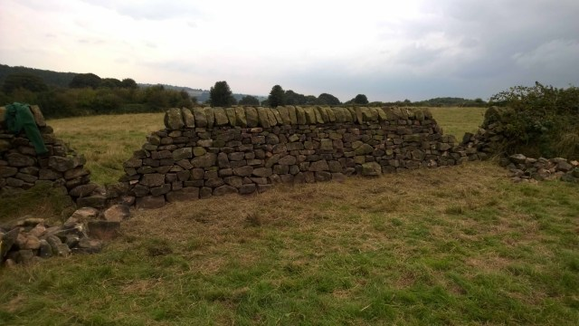 Dry Stone Walling - 09