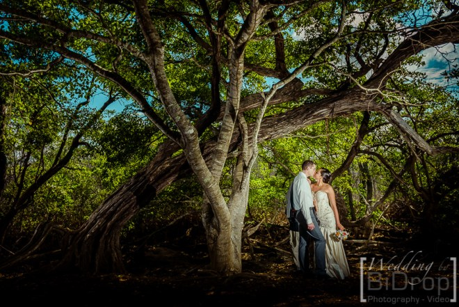 Wedding-by-bidrop-costa-Rica-140906-085753
