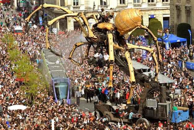 Araignée géantes nantes