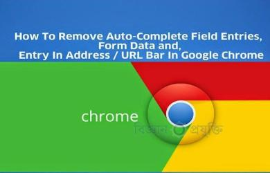 How-To-Remove-Auto-Complete-Field-Entries,-Form-Data-and,-Entry-In-Address-URL-Bar-In-Google-Chrome
