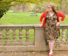 plus size cheetah dress
