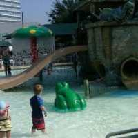 Noah's Ark Pool- First Methodist Houston
