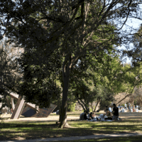 Top 8 Picnic Spots in Houston