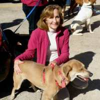 Meet Cherie Vanis of Operation Pets Alive!  Houston Grandmother & Dog's Best Friend