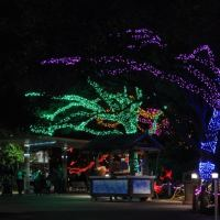 Top 10 Things to Do this Week & Weekend, in Houston, with Kids – November 30-December 6, 2015
