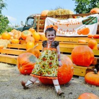 Give Away: Family 4 Tickets to Farm Fun at Blessington Farms!