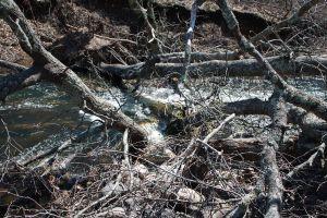2013 Big Pine Lake Dam Repairs 003