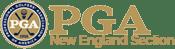 NEPGA-logo.png