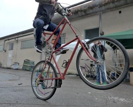 Tallbikewheelie