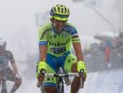 Tirreno Adriatico 2015 - 50a Edizione - 5a tappa Esanatoglia - Terminillo 194 km  - 15/03/2015 - Alberto Contador (Tinkoff - Saxo) - foto Luca Bettini/BettiniPhoto©2015