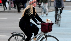 danish bicyclist lady