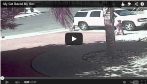 Screen shot 2014-05-15 at 12.46.24 AM