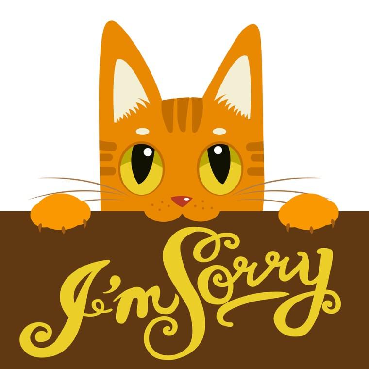 Keys to an Apology
