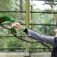 KL Bird Park Part 2