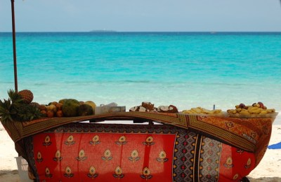 BioEcoGeo_Zanzibar