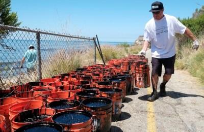 Un volontario porta un secchio contenente petrolio recuperato durante la pulizia di un tratto di costa a Pismo Beach, California, Stati Uniti  (AP Photo/Michael A. Mariant)