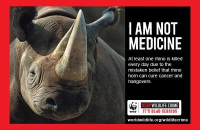 Rhino_altmed_WWF